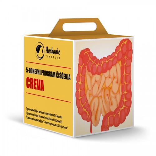 5-odnevni program čišćenja creva